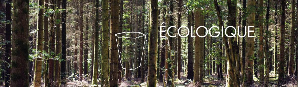 Corbeille de bureau écologique en carton
